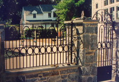 Customized Gate with Ornamental Design